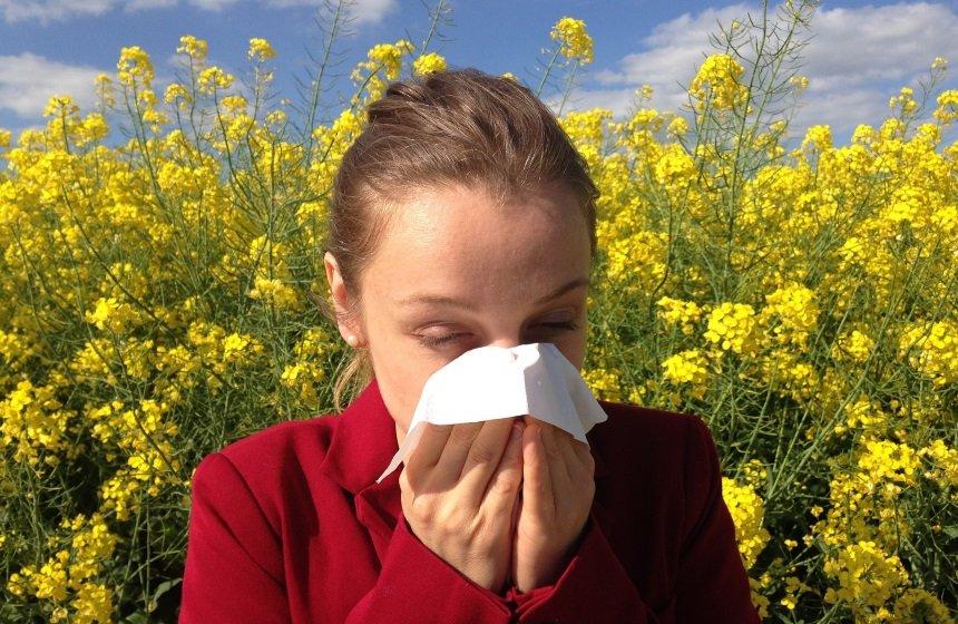 Allergien, Pollenallergie